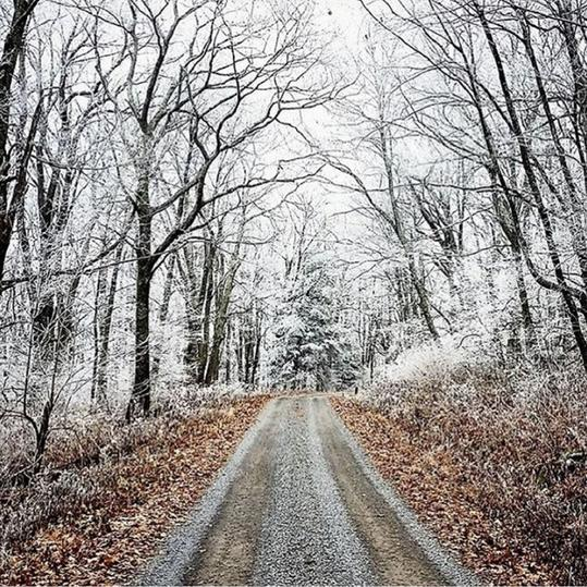 Our Best Instagrams virginia holiday