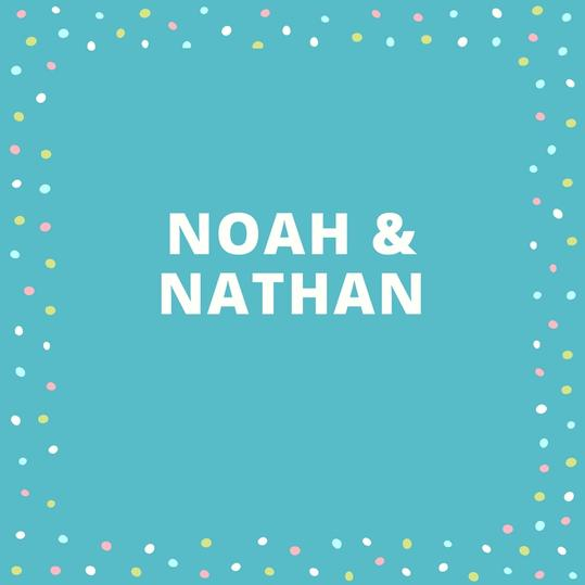 Twin Names: Noah and Nathan