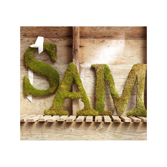 Live Moss Letter