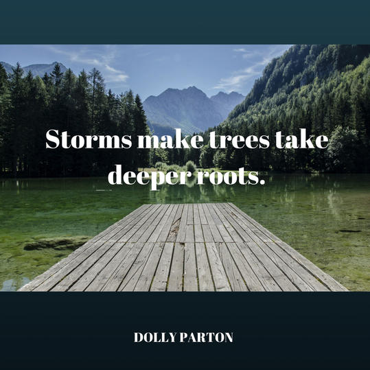 Dolly on Storms
