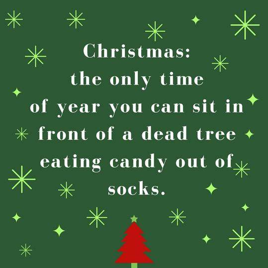 Christmas: the only time of year you can sit in front of a dead tree eating candy out of socks.