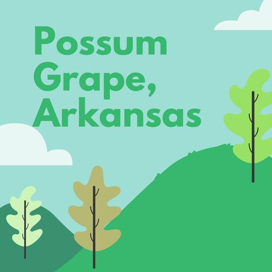 Possum Grape, Arkansas