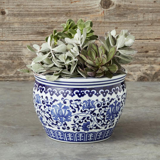 Blue & White Ceramic Planter