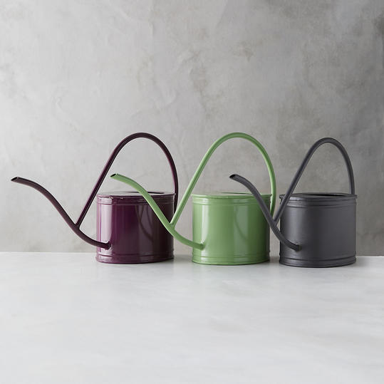Iron Watering Can