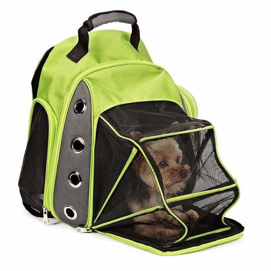 Casual Canine Ultimate Backpack Carrier