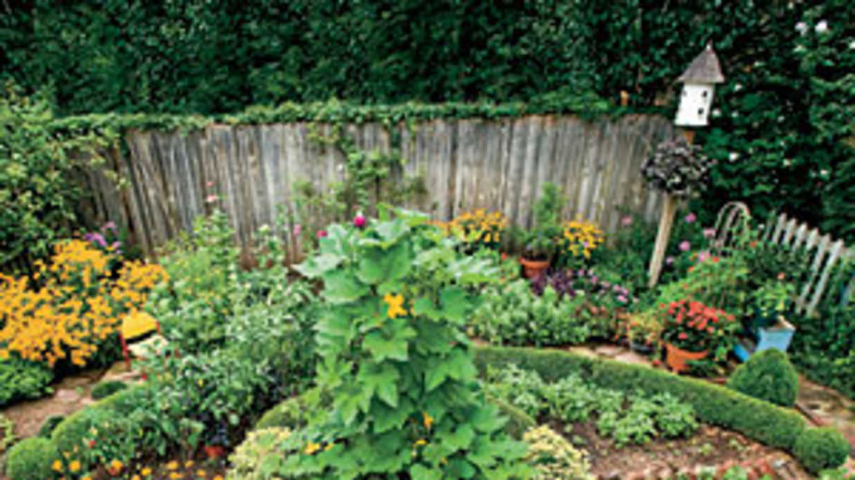 Savvy garden design secrets southern living Savvy home and garden
