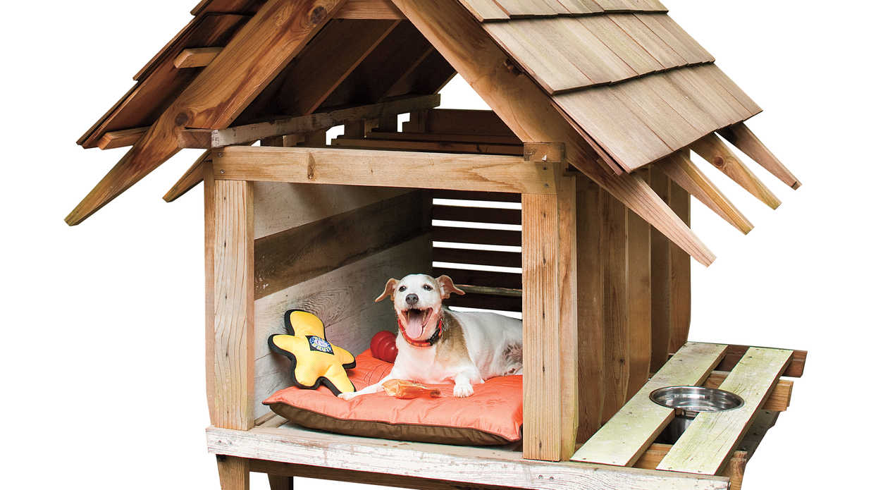 Doghouse Designs: Architect-Designed Doghouse