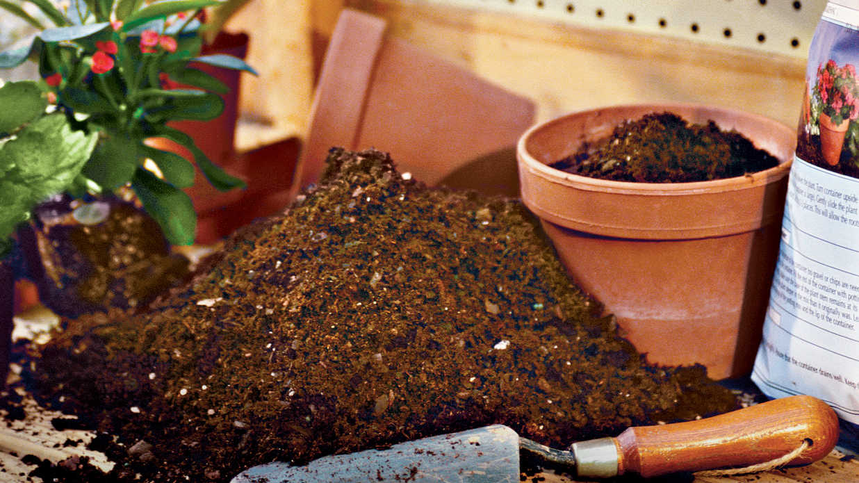 The scoop on potting soil southern living for Garden soil or potting soil
