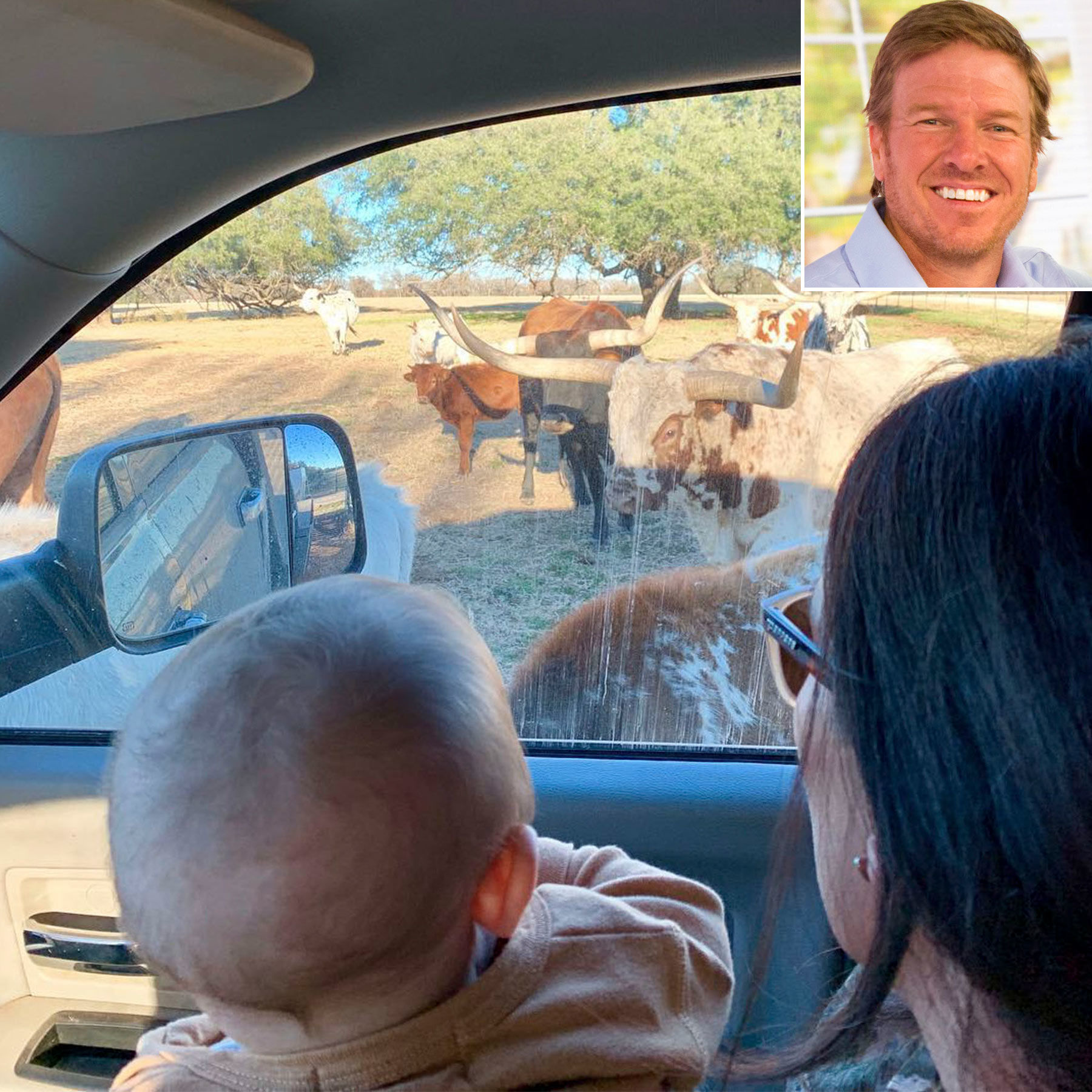 'Farm Life!' Chip and Joanna Gaines' Son Crew, 7 Months, Gets Acquainted with Longhorns