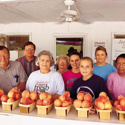 The Best Peaches in South Carolina