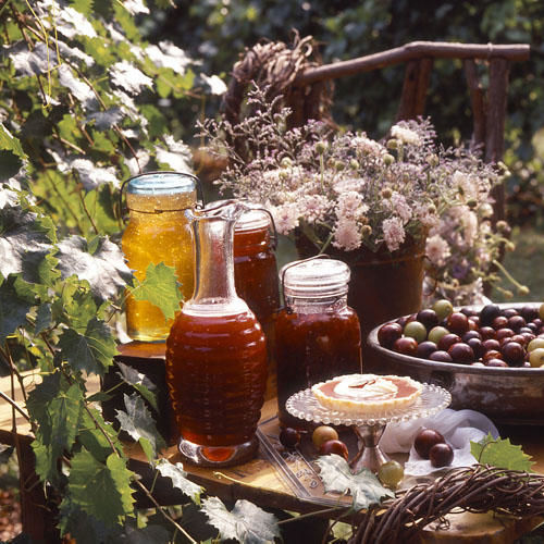 Flavorful Muscadine Jelly