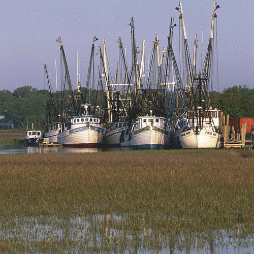 Discover Gullah Country