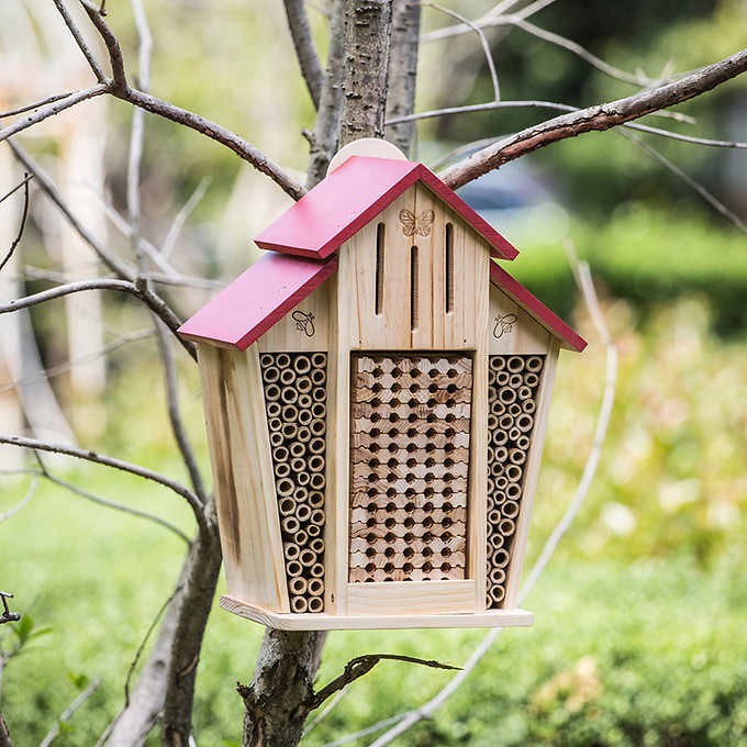 "WATCH: Costco's Adorable New ""Bee House"" Has Our Hearts Buzzing"