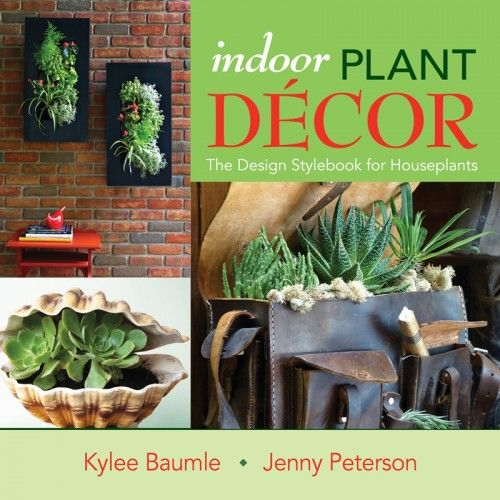 """Indoor Plant Decor"" -- Houseplants With Style"