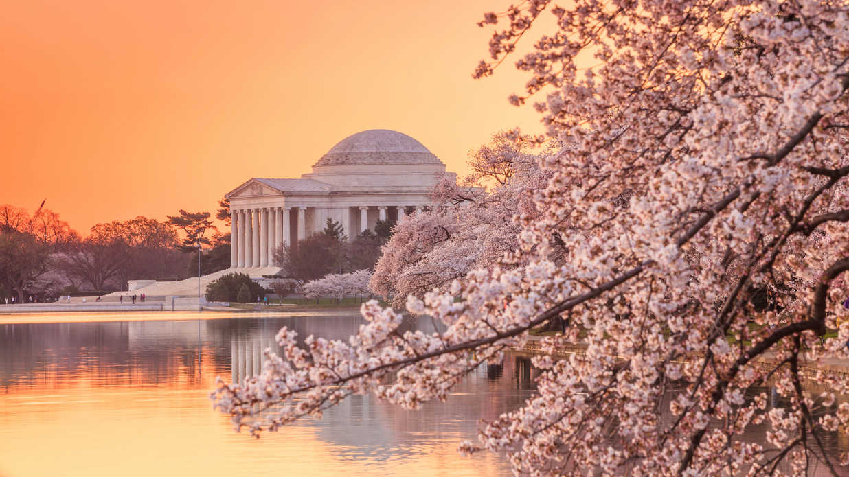 Best Parks and Gardens in the South