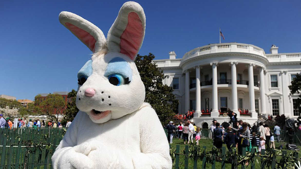 15 surprising facts about the white house easter egg roll for Easter egg fun facts