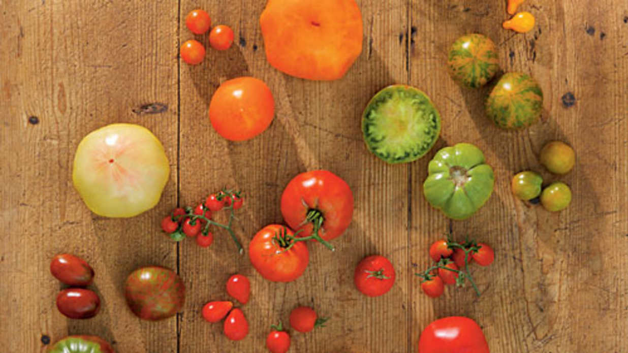 Tomatoes: Plant By Color