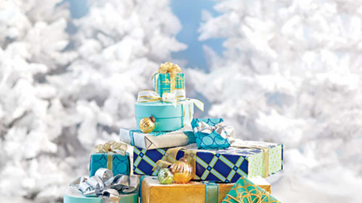 The 2014 Holiday Gift Guide