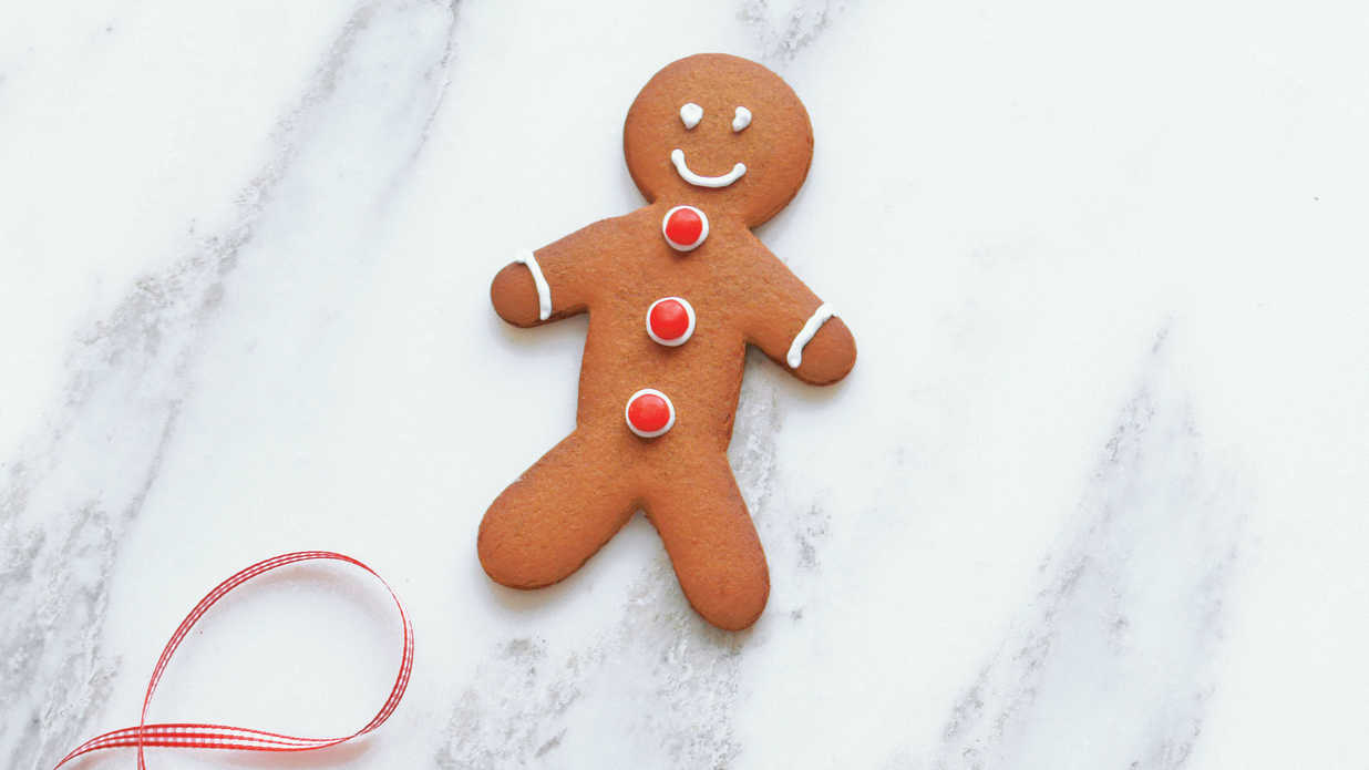 Enchanting Christmas Treats for Kids