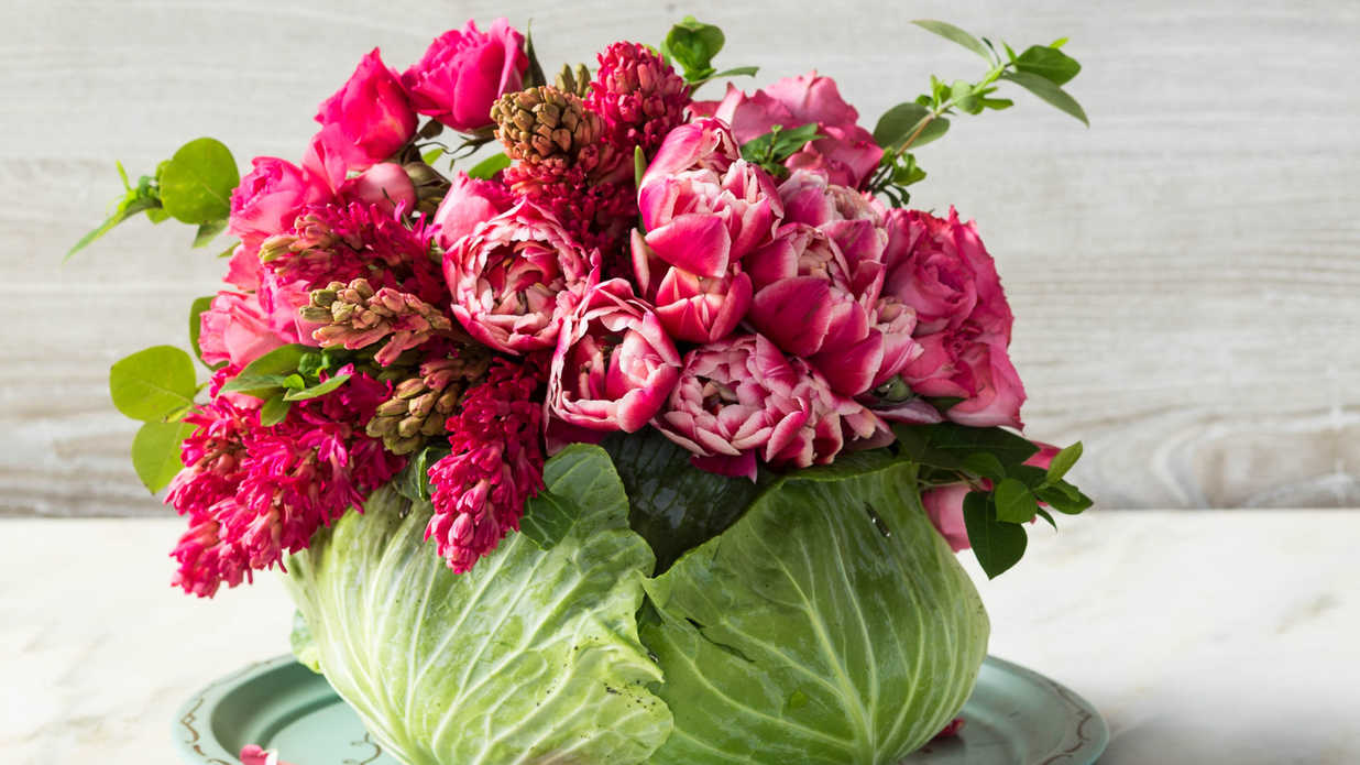 How To Make A Mothers Day Diy Cabbage Centerpiece Southern Living