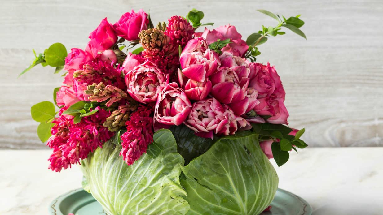 Diy Cabbage Flower Centerpiece Southern Living