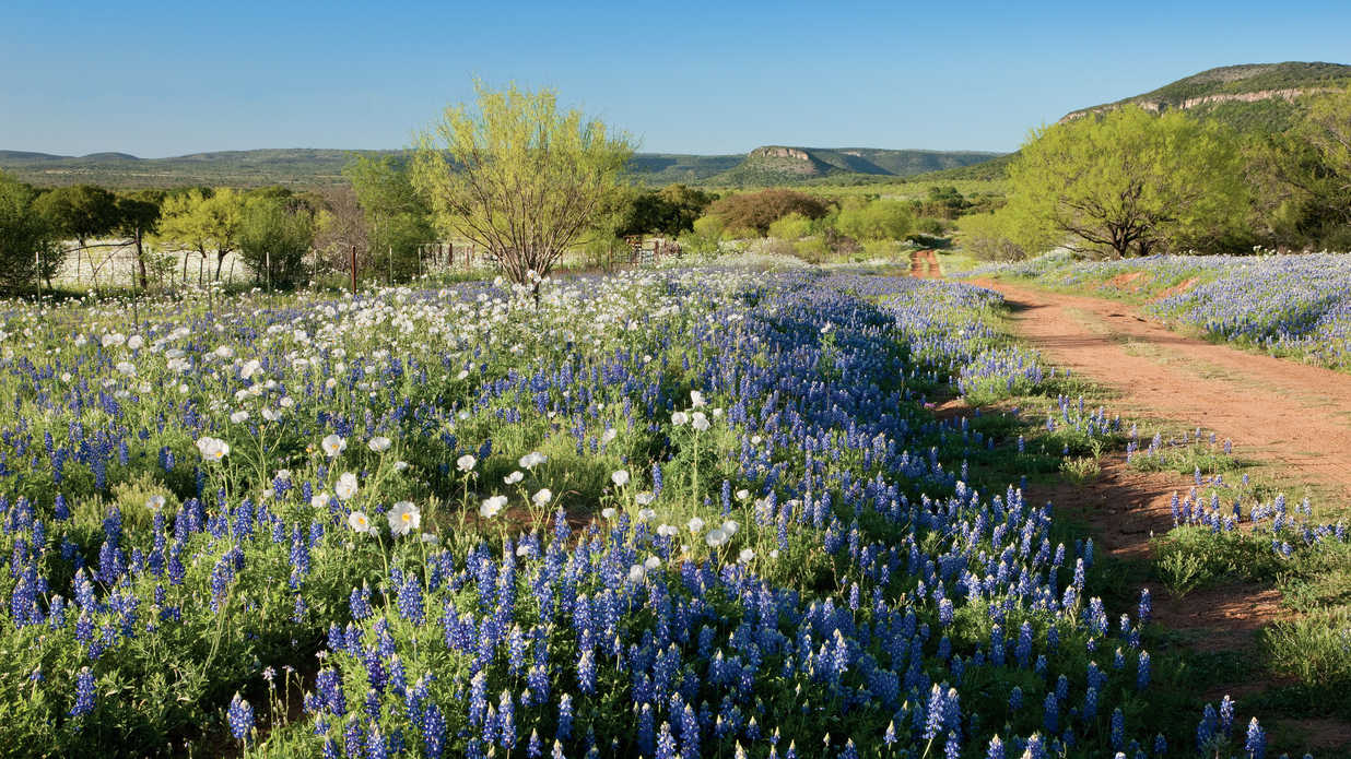 16 Adventures in Texas' Hidden Hill Country