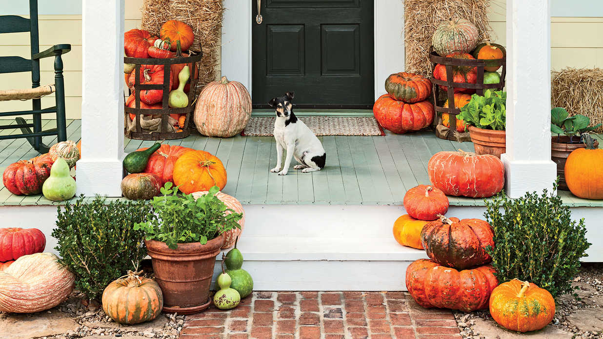 Porch pumpkin patch fall decorating ideas southern living Fall outdoor decorating with pumpkins