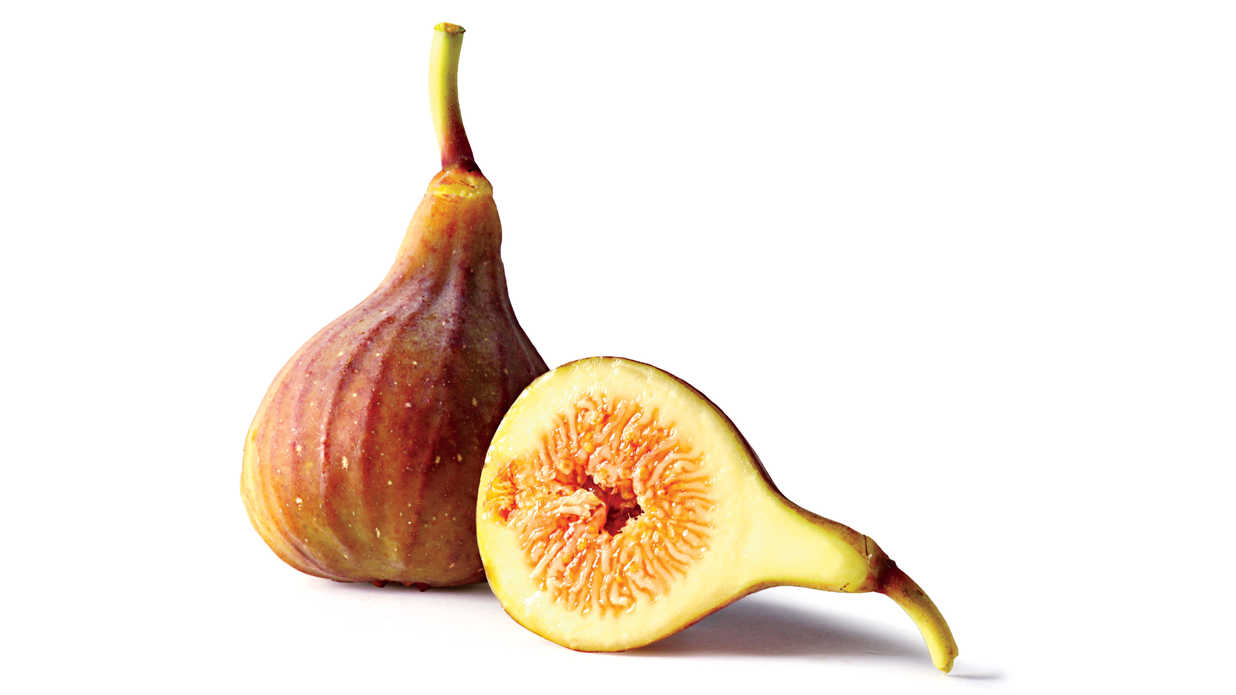 Fig Fruit Varieties