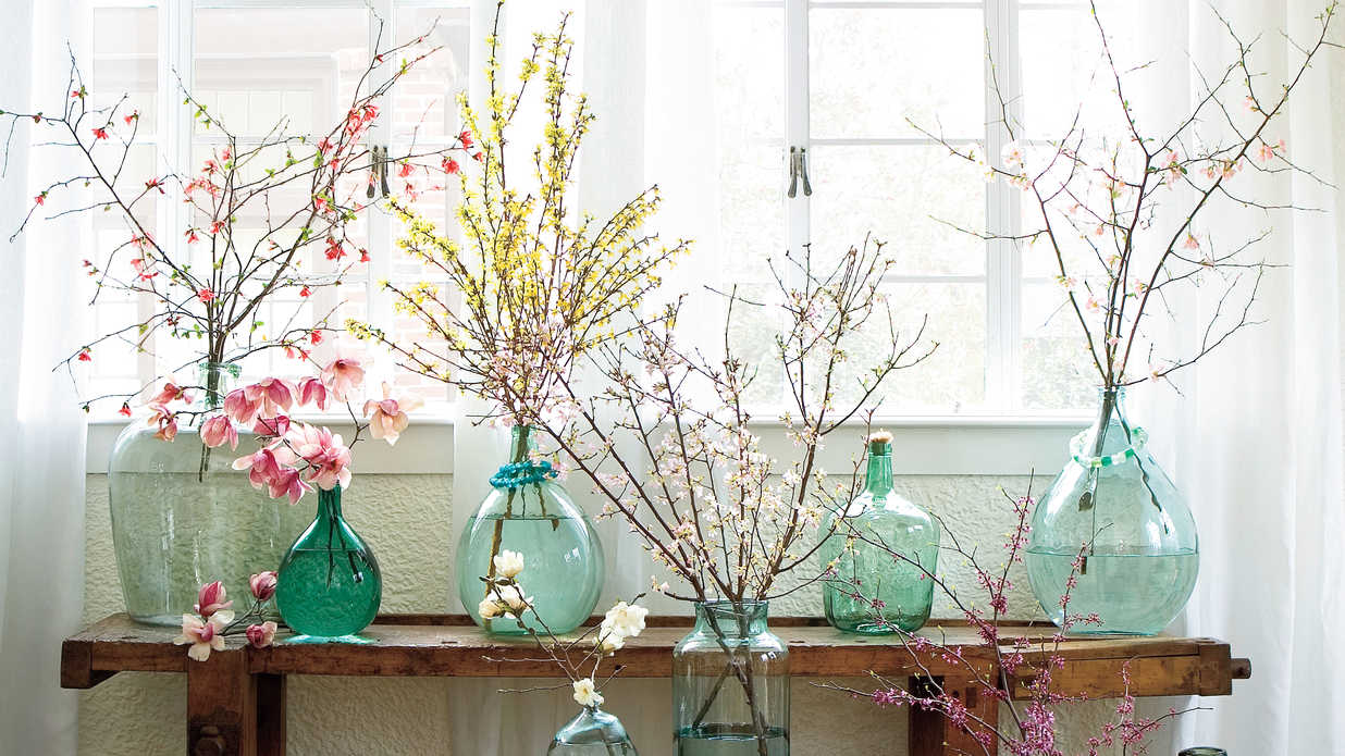 Get Spring Blooms Early