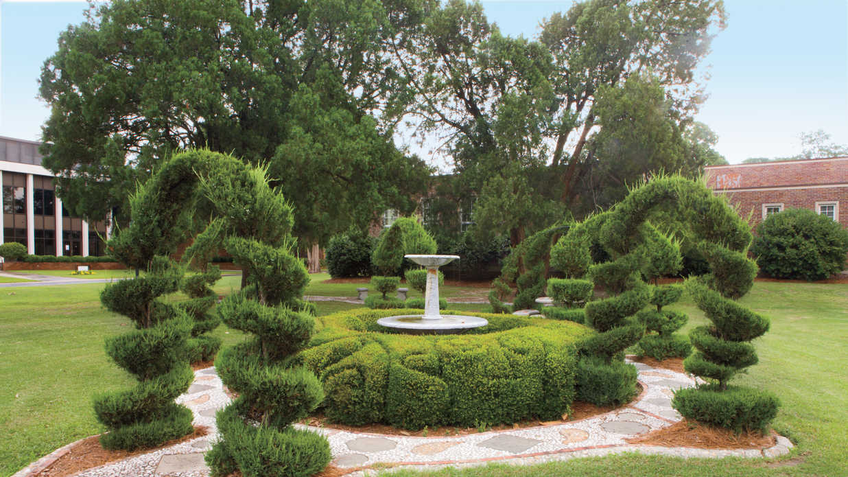 10 topiary designs by pearl fryar southern living for Southern living landscape design