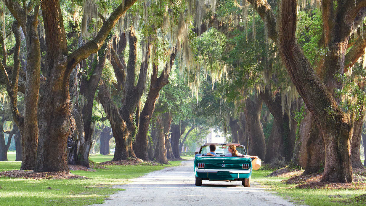 Explore The Carolina Lowcountry Southern Living