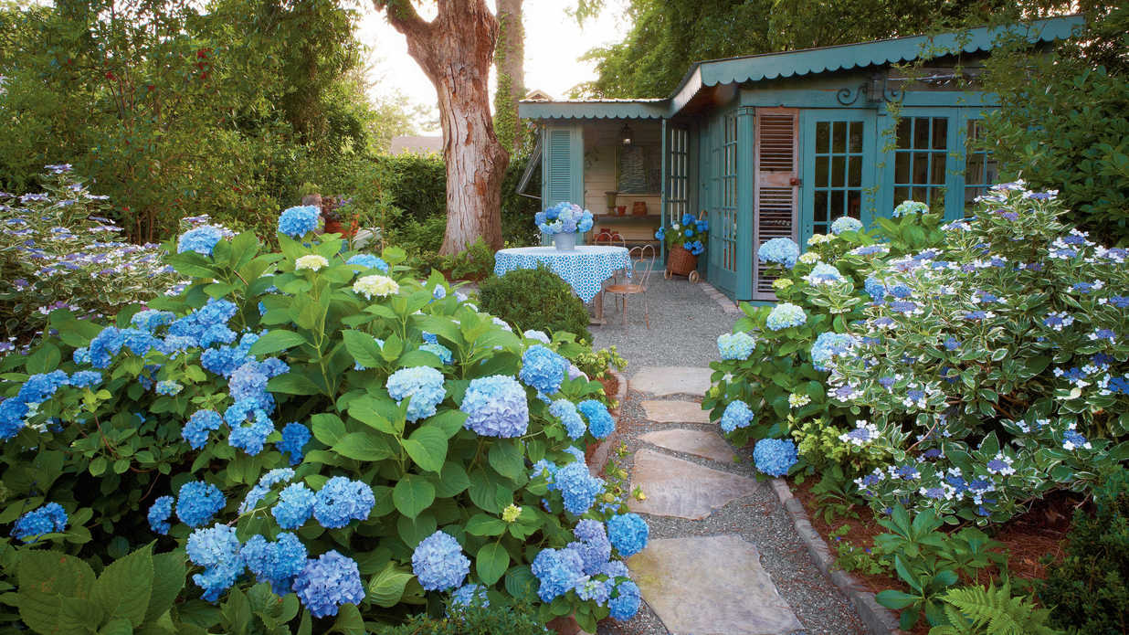 Exceptionnel 17 Dreamy Hydrangea Gardens That Are Giving Us Major Inspiration   Southern  Living
