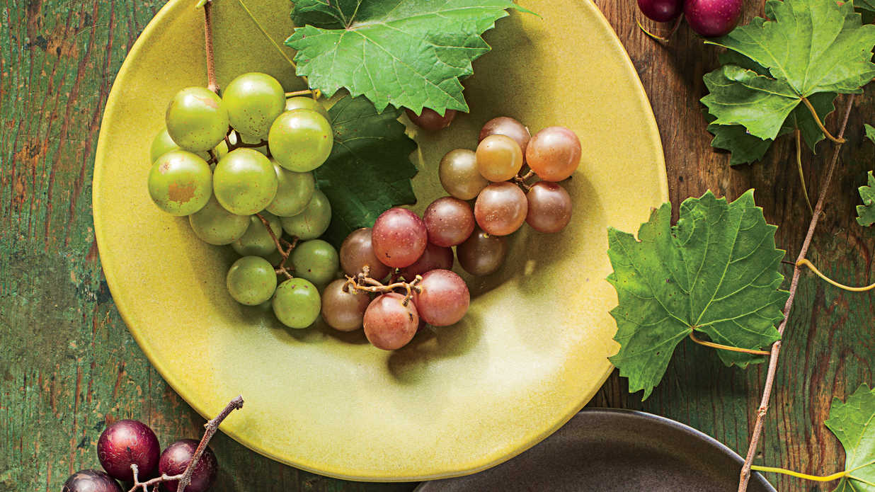 How To Grow Muscadines Southern Living