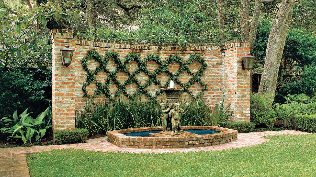 Blank Wall Solution Easy Growing Vines Southern Living