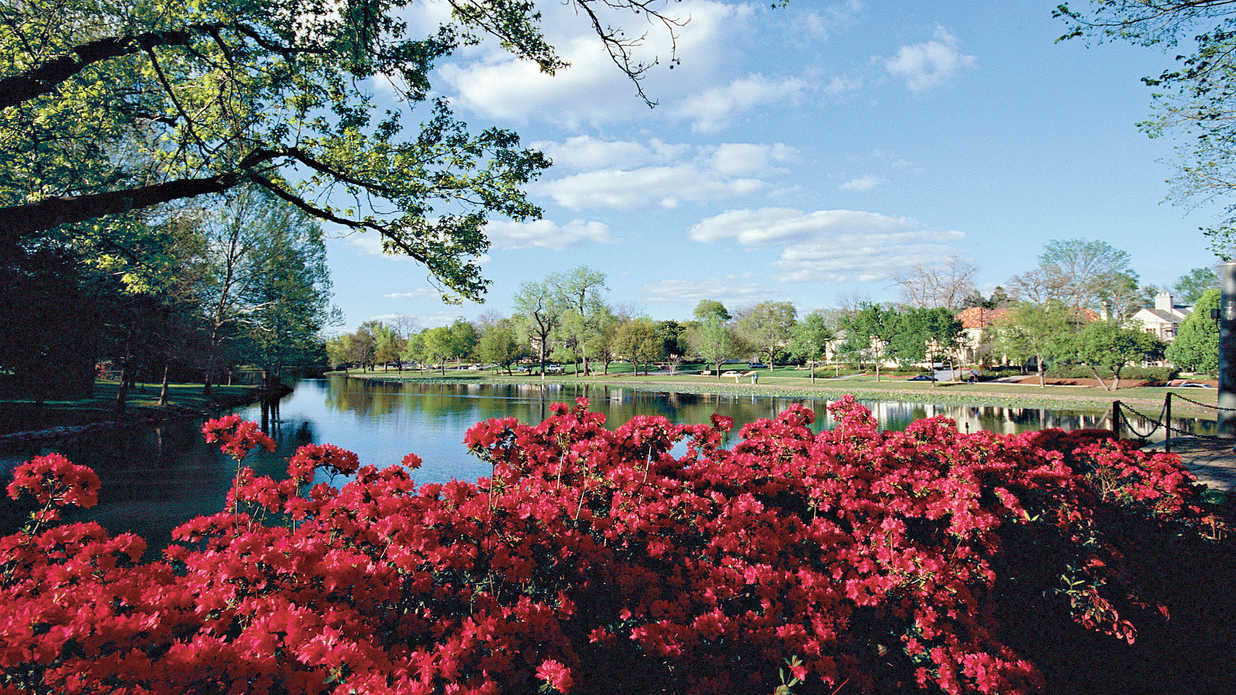 Two-Step Into Spring in Dallas, Texas - Southern Living