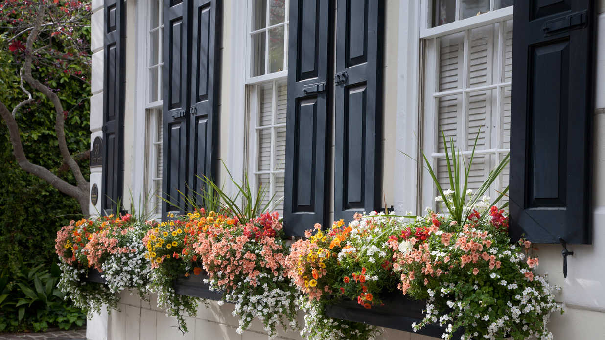 Window box planters southern living - English style window boxes living facades ...