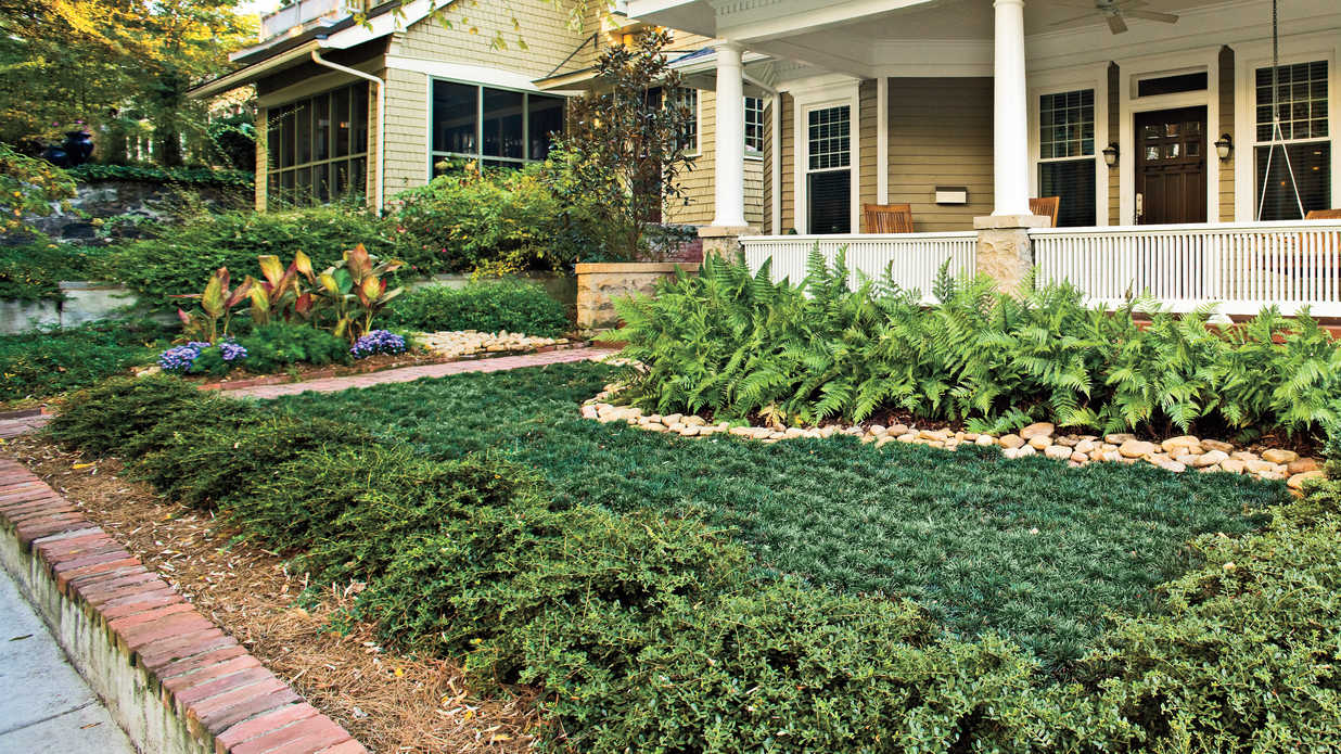 Easy no mow lawns southern living for No maintenance front yard