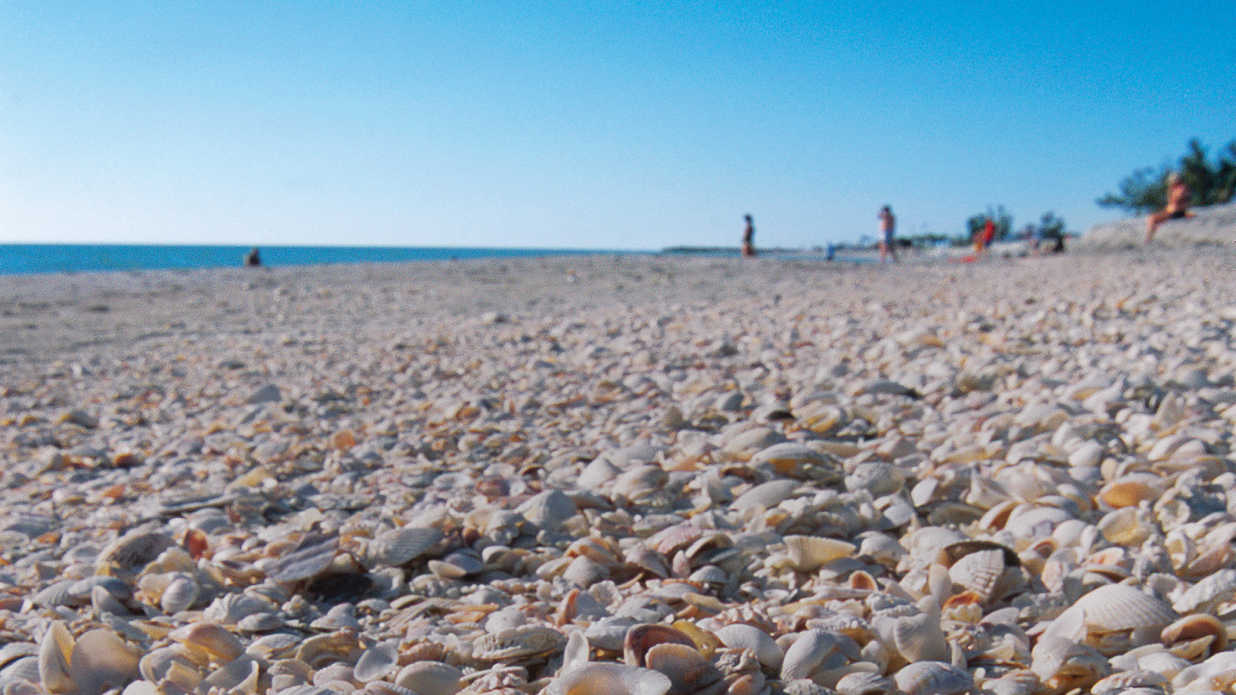 Three-Day Weekend Guide: Captiva & Sanibel Islands, FL