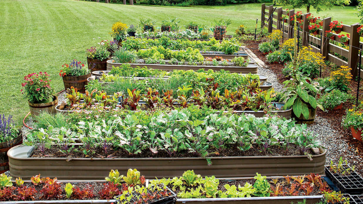 How to keep your garden growing all summer long southern living - Summer time gardening tips ...