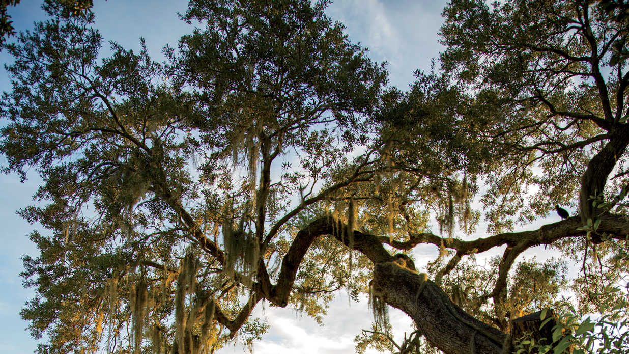 Small towns we love for Best small towns to live in in florida