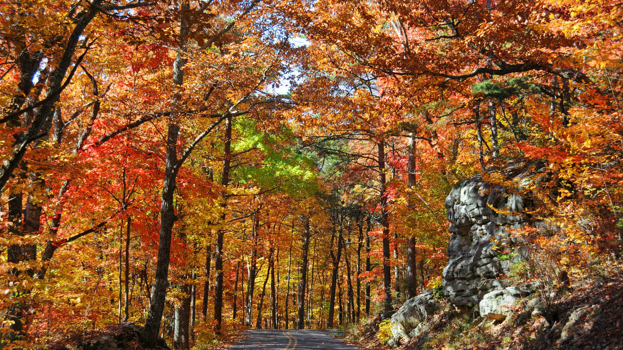 State By State Guide To The Best Fall Color Southern Living