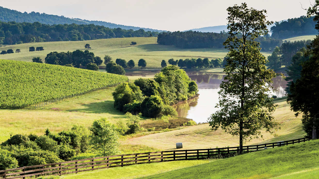 Plan a Girlfriend Getaway to Virginia's Wine Country