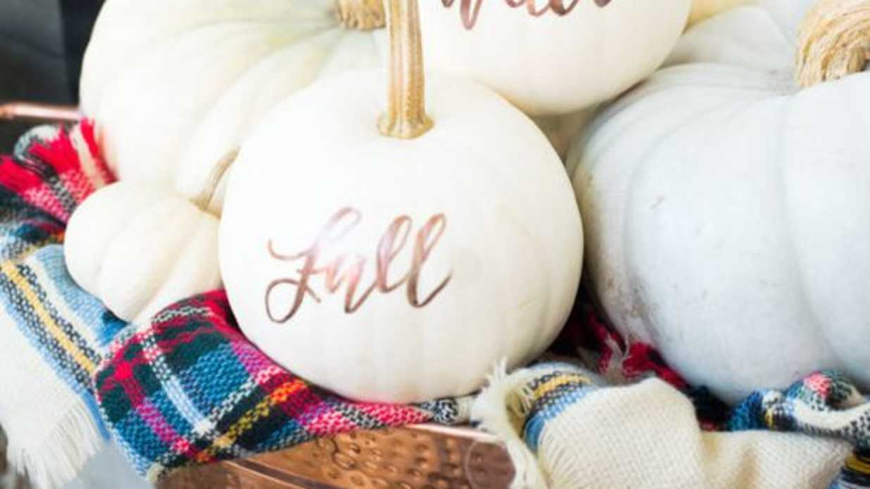 Cute Pink Pumpkins to D.I.Y. This Halloween