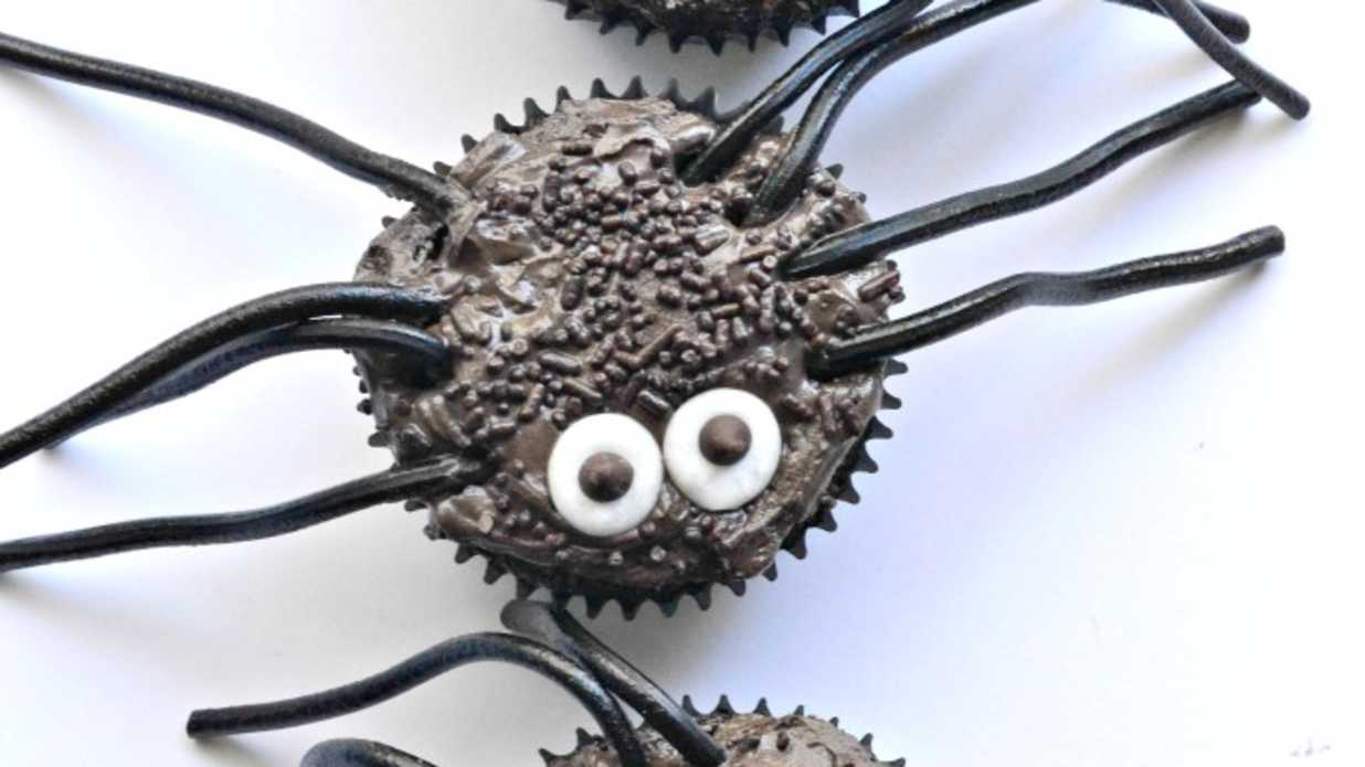 5 Cute Spider Cupcake Recipes for Halloween