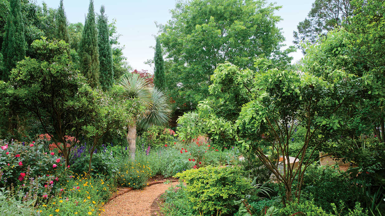 A Dreamy Year Round Garden In Austin Southern Living