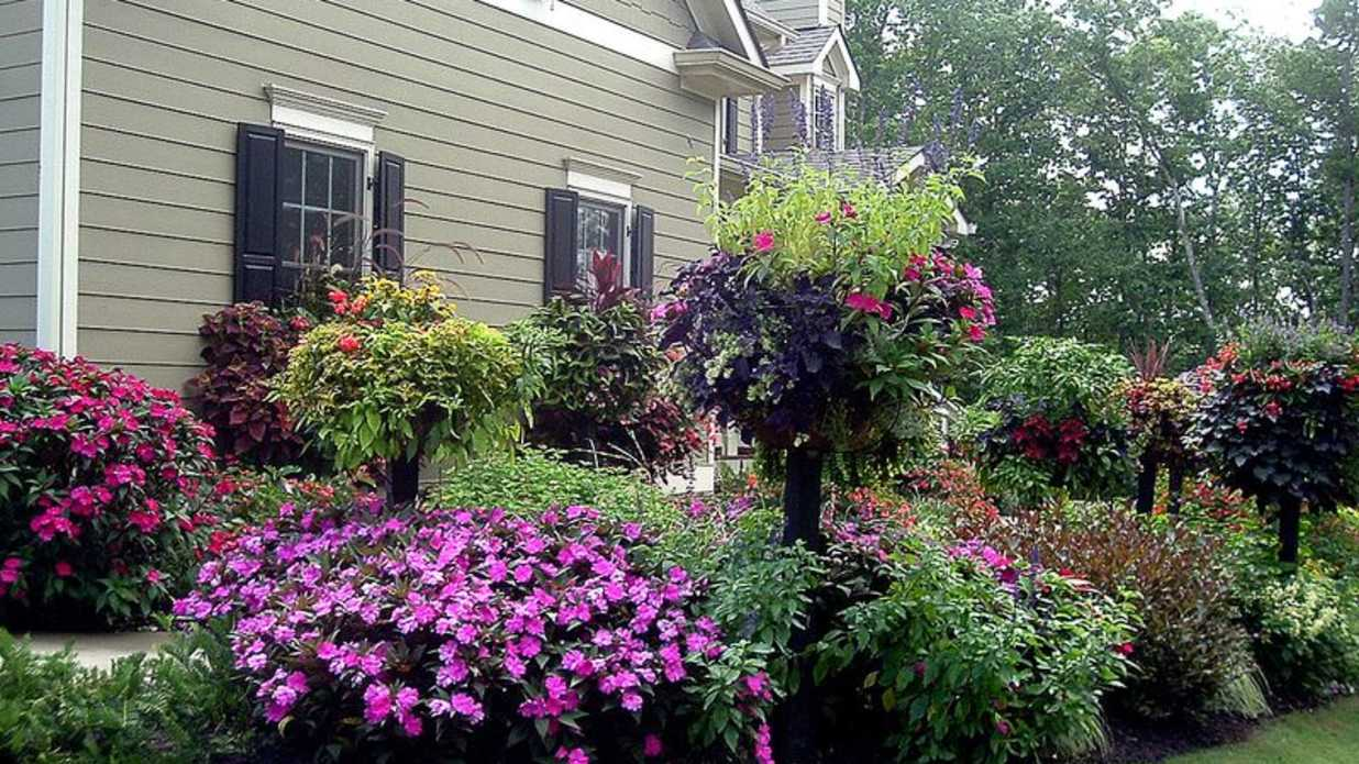 Amazing Waterwise Garden - Southern Living
