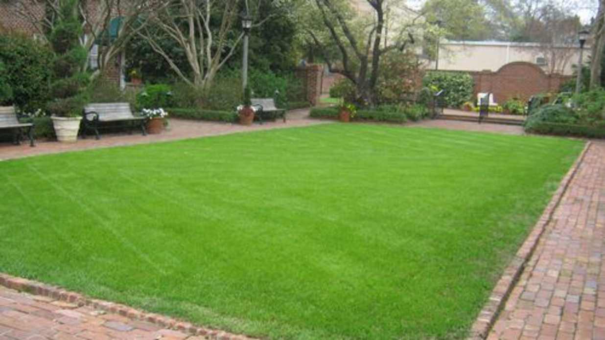 7 Dumb Ways To Feed Your Lawn Southern Living