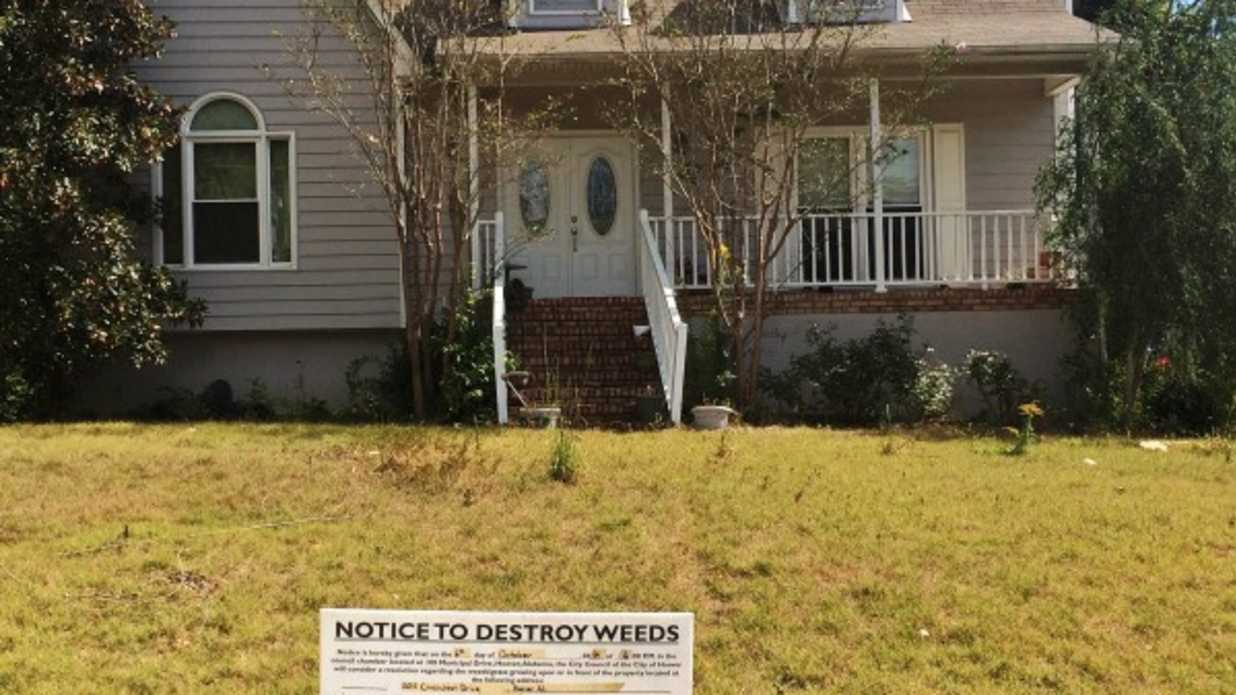 what to do about weedy neighbors