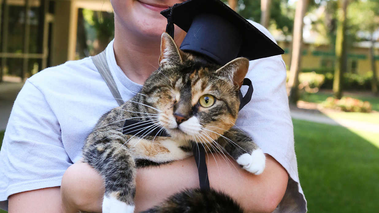 Florida College Honors the Companion Animals of Students with Their Own Graduation