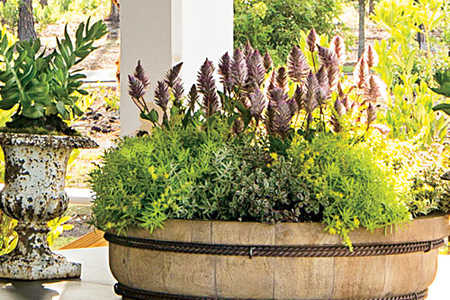 Palmetto Bluff Simple Moss Container Garden